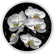 Dew-kissed Cascading Orchids Round Beach Towel