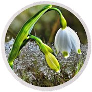 Dew On Lilly Of The Valley Round Beach Towel