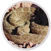 Diamondback Rattlesnake 062414f Round Beach Towel