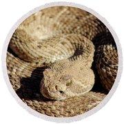 Diamondback Rattlesnake Close-up 062414a Round Beach Towel
