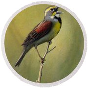 Dickcissel Summer Song Round Beach Towel