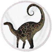 Dicraeosaurus Dinosaur Tail Round Beach Towel