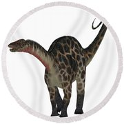Dicraeosaurus On White Round Beach Towel