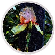 Digital Painting Pink And Yellow Iris 6758 Dp_2 Round Beach Towel