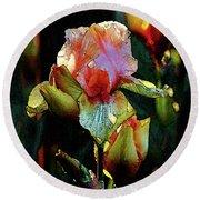 Digital Painting Vibrant Iris 6764 Dp_2 Round Beach Towel
