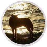 Dingo Sunset Round Beach Towel