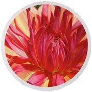 Dinner Plate Dahlia Flower Art Print Orange Baslee Troutman Round Beach Towel