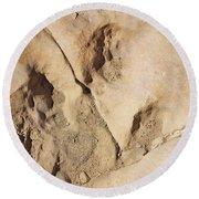 Dino Tracks In The Desert 3 Round Beach Towel