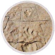 Dino Tracks In The Desert 4 Round Beach Towel