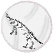 Dinosaur: Anchisaurus Round Beach Towel