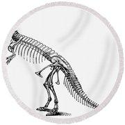 Dinosaur: Ceratosaurus Round Beach Towel