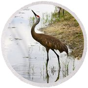 Dip In The Pond Round Beach Towel