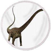 Diplodocus Profile Round Beach Towel