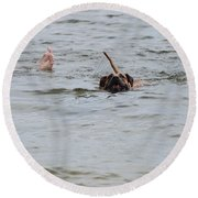 Dirty Water Dog And Feet Round Beach Towel