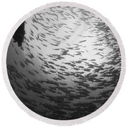 Diver And A Large School Of Bigeye Round Beach Towel by Steve Jones
