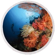 Diver Swims By A Soft Coral Reef Round Beach Towel