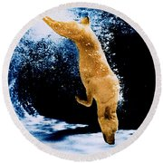 Diving Dog Underwater Round Beach Towel
