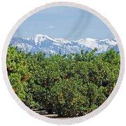 Dm6850-e Orange Grove And The Sierra Nevada Ca Round Beach Towel
