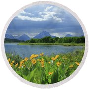 Dm9235 Mt. Moran From Oxbow Bend Round Beach Towel