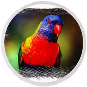 Do-00153 Colourful Lorikeet Round Beach Towel