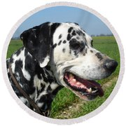 Dodgy The Dalmation Round Beach Towel