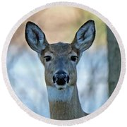 Doe A Deer Round Beach Towel