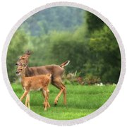 Doe And Fawn Round Beach Towel