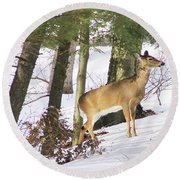 Doe Emerges Round Beach Towel