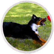 Dog And Red Frisbee Round Beach Towel
