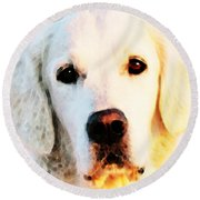 Dog Art - Golden Moments Round Beach Towel