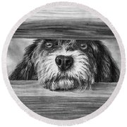Dog At Gate Round Beach Towel