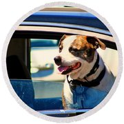 Dog In Car Round Beach Towel