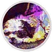 Dog Noddy Lhasa Apso Pet Puppy  Round Beach Towel