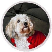 Dog Under Umbrella Round Beach Towel