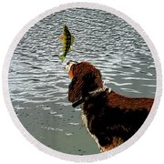 Dog Vs Perch 4 Round Beach Towel