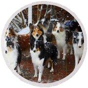 Dogs During Snowmageddon Round Beach Towel