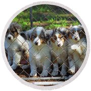 Dogs. Let Us Out #2 Round Beach Towel