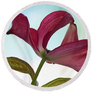 Dogwood Ballet 3 Round Beach Towel