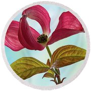 Dogwood Ballet 4 Round Beach Towel