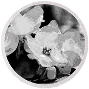Dogwood Blossoms - Black And White Round Beach Towel