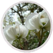 Dogwood Flowers White Dogwood Trees Blossoming 8 Art Prints Baslee Troutman Round Beach Towel