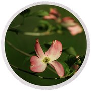 Dogwood In Pink Round Beach Towel