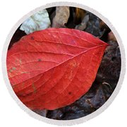 Dogwood Leaf Round Beach Towel