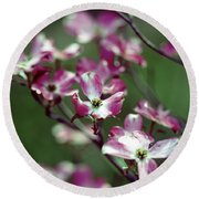 Dogwood Tree Round Beach Towel