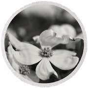 Dogwoods In Black And White Round Beach Towel