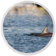 Dolphin By The Dock Round Beach Towel