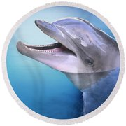 Dolphin In The Moonlight Round Beach Towel