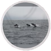 Dolphin Joy 2 Round Beach Towel