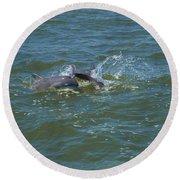 Dolphin Race Round Beach Towel