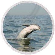 Dolphin Splash Round Beach Towel